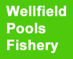 Wellfield Pools Fishery
