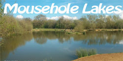 Mousehole Lakes