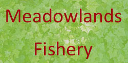 Meadowlands Match & Pleasure Fishery
