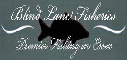 Blind Lane Fisheries