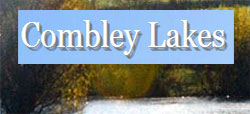 Combley Lakes Fishery