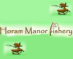 Horam Manor Fishery
