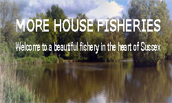 More House Fishery
