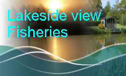 Lakeside View Carp Fisheries