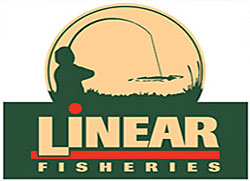 Linear Fisheries