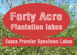Forty Acre Plantation Lakes