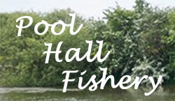 Pool Hall Fisheries