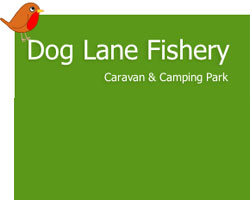 Dog Lane Fishery